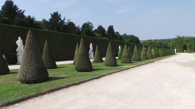 The Avenues and Groves of the Gardens of Versailles